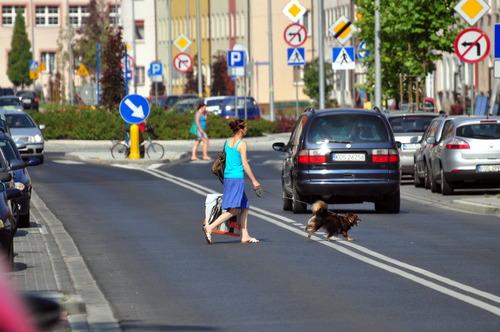 """Na ulicy Olszewskiego w Oświecimiu piesi chodzą """"swoimi przejściami"""". Fot. Szymon Chabior"""