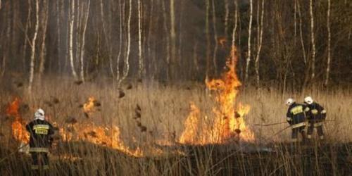 OŚWIĘCIM. Podpalał łąkę. Zauważyli go policjanci