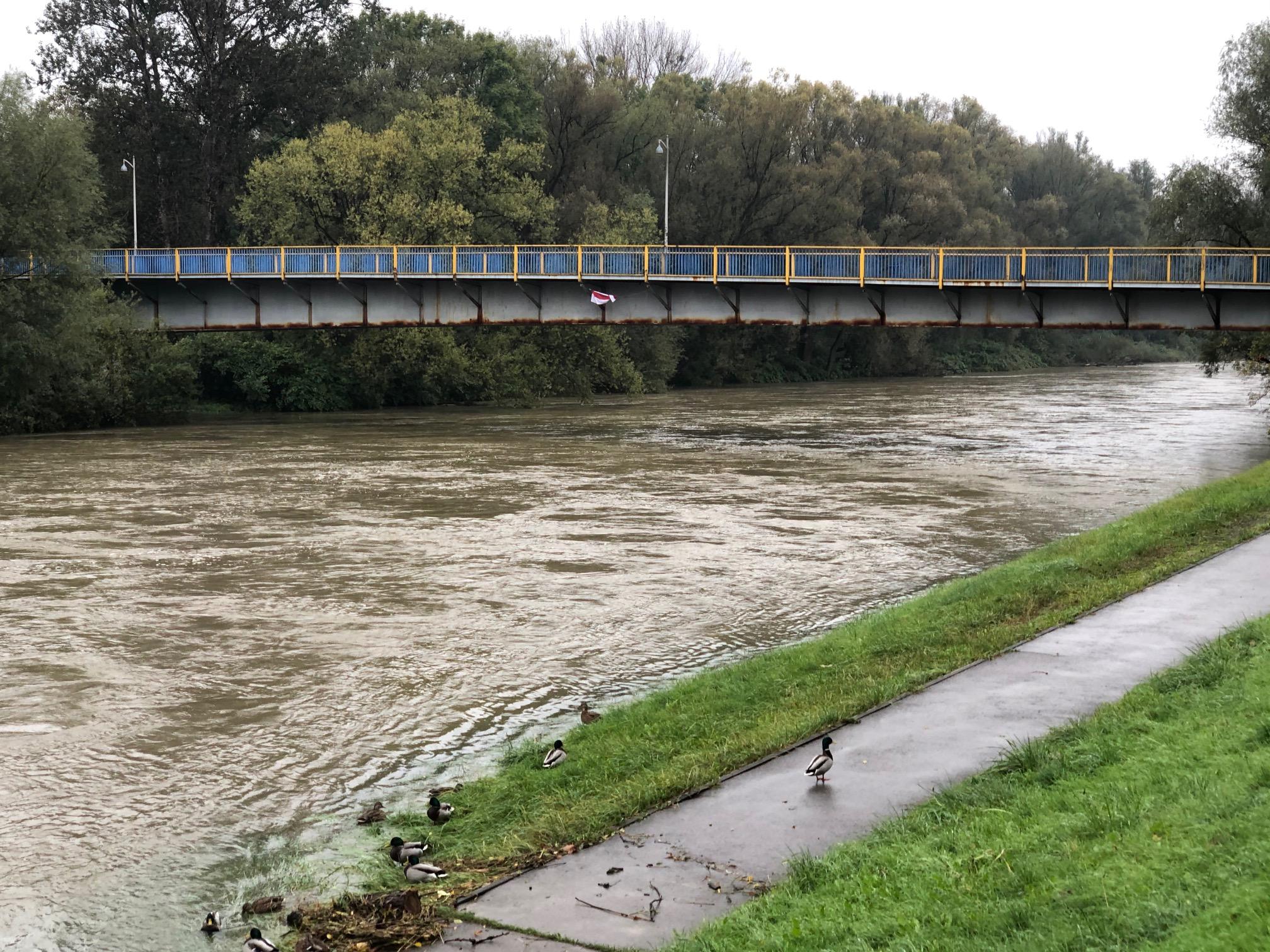 OŚWIĘCIM. W stolicy powiatu oświęcimskiego obowiązuje alarm powodziowy
